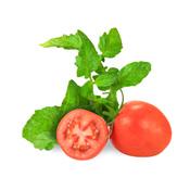 Folha de tomate