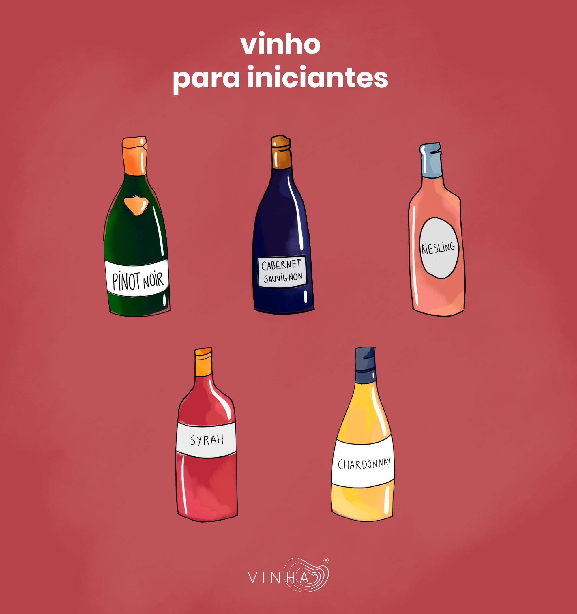 c4a1f9aeb Entrar no mundo do Vinho pode ser um pouco desafiante. O nosso paladar  precisa de tempo para se adequar aos diferentes sabores