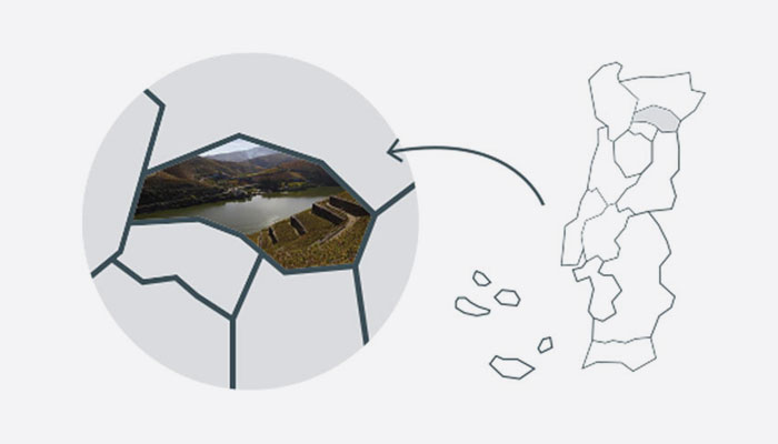 douro-grelha