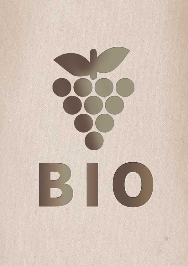 Vinhos biológicos: o que são e por que devem ser tidos em conta