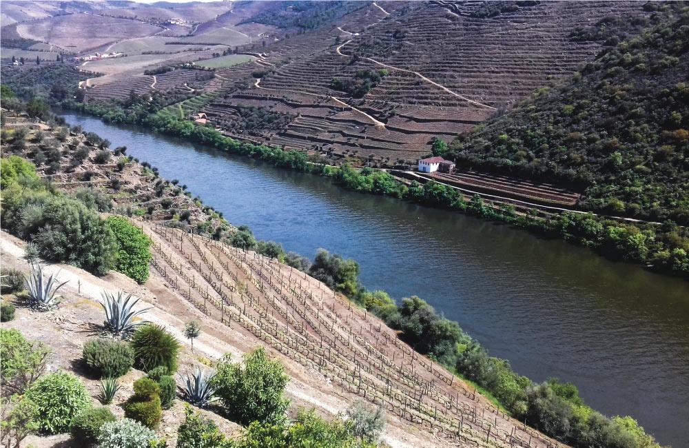 Os Segredos do Douro