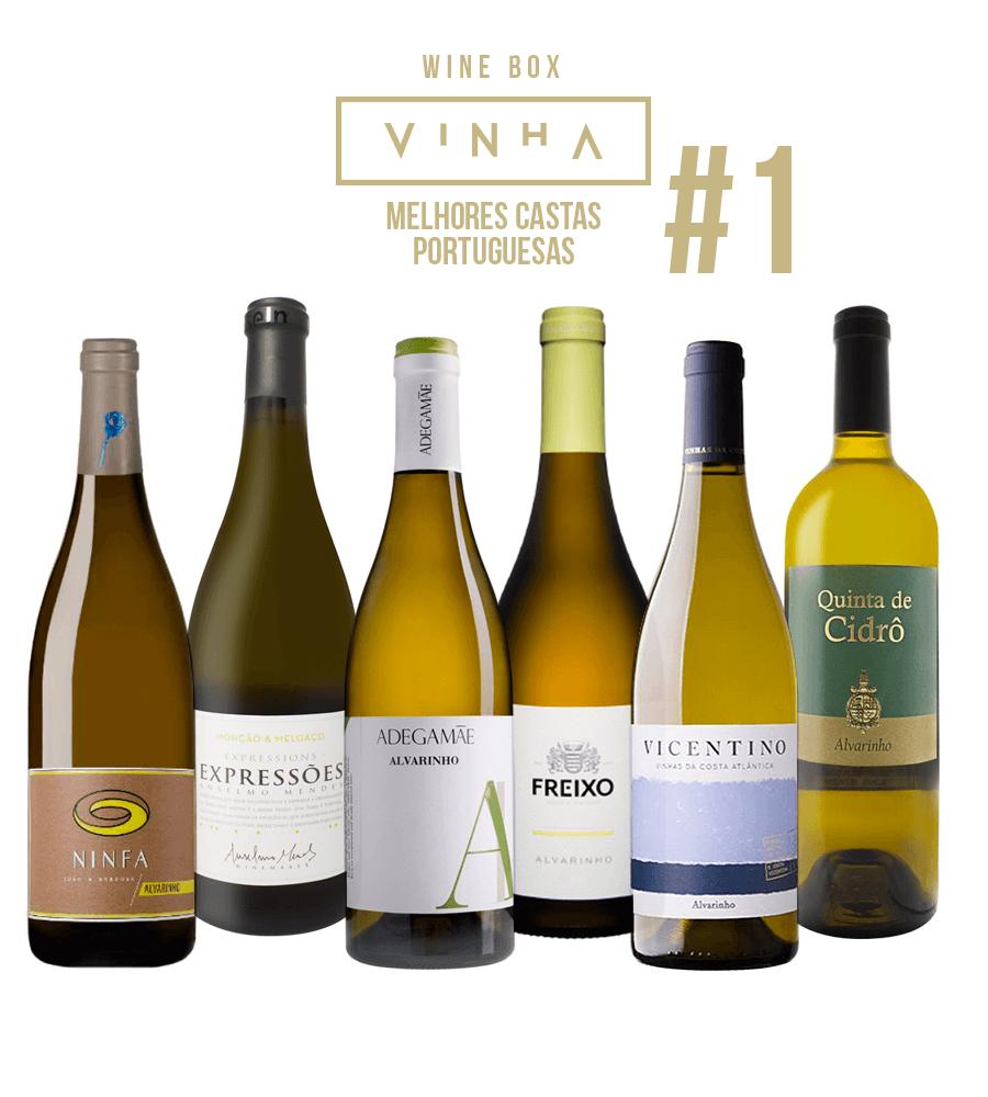 Wine Box Vinho Branco Seleção Rodolfo Tristão #1 Alvarinho Portugal