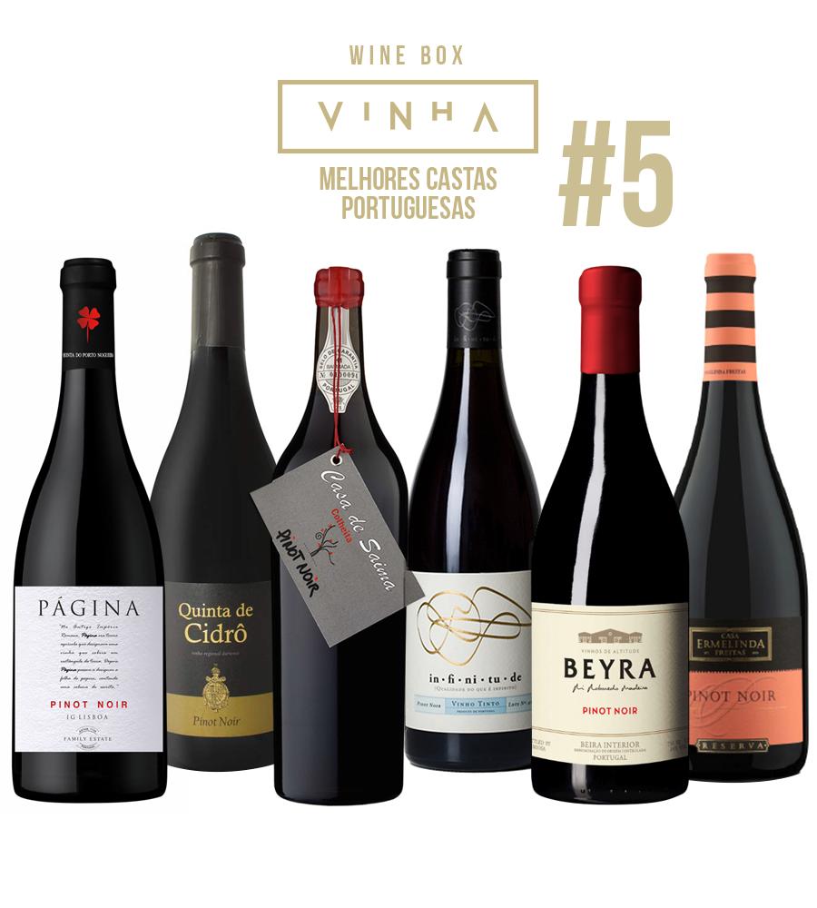 Wine Box Vinho Tinto Seleção Rodolfo Tristão #5 Pinot Noir Portugal
