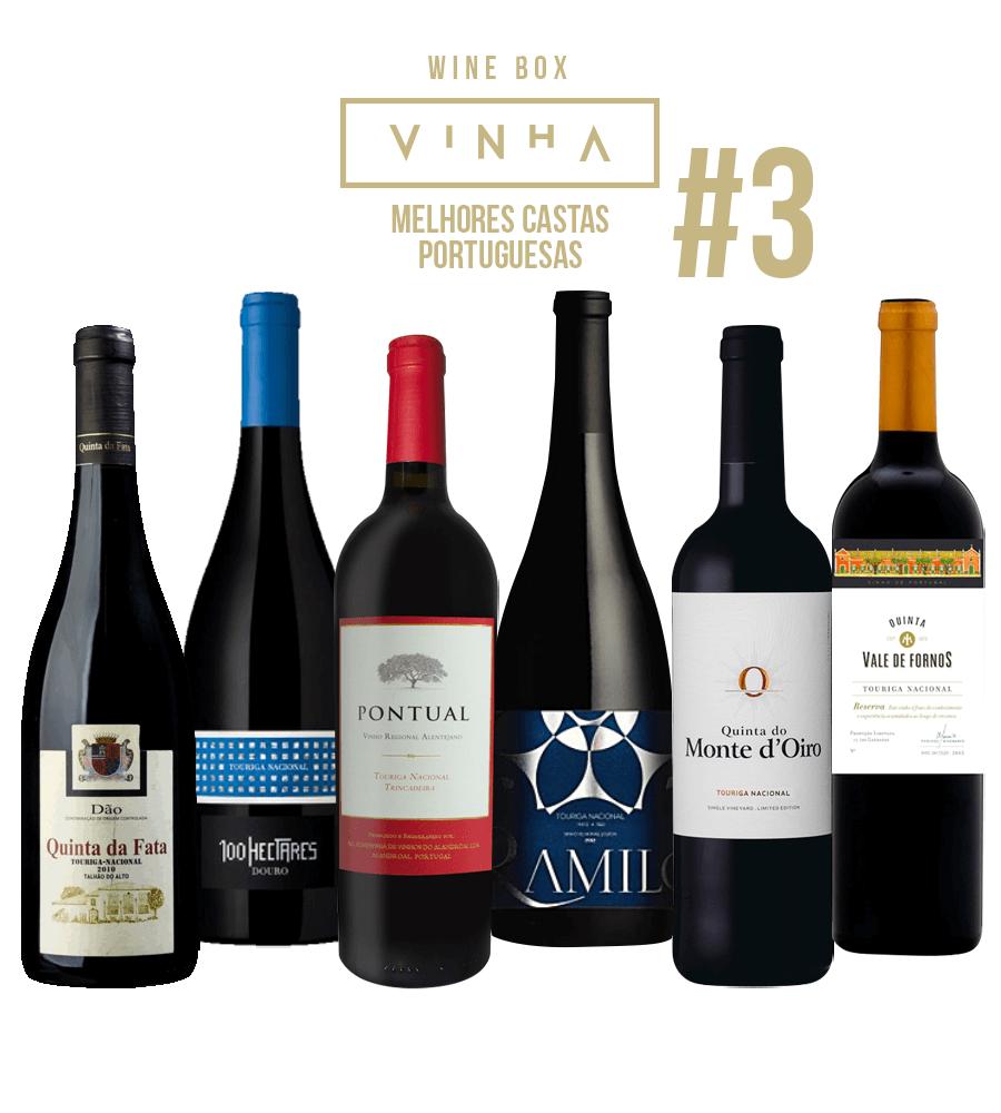 Wine Box Vinho Tinto Seleção Rodolfo Tristão #3 Touriga Nacional Portugal