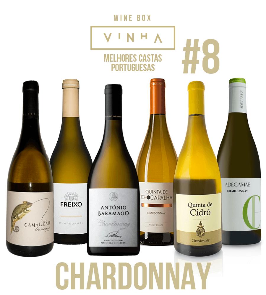 Wine Box Vinho Branco Seleção Rodolfo Tristão #8 Chardonnay Portugal