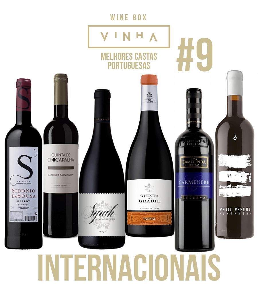 Wine Box Vinho Tinto Seleção Rodolfo Tristão #9 Castas Internacionais Portugal