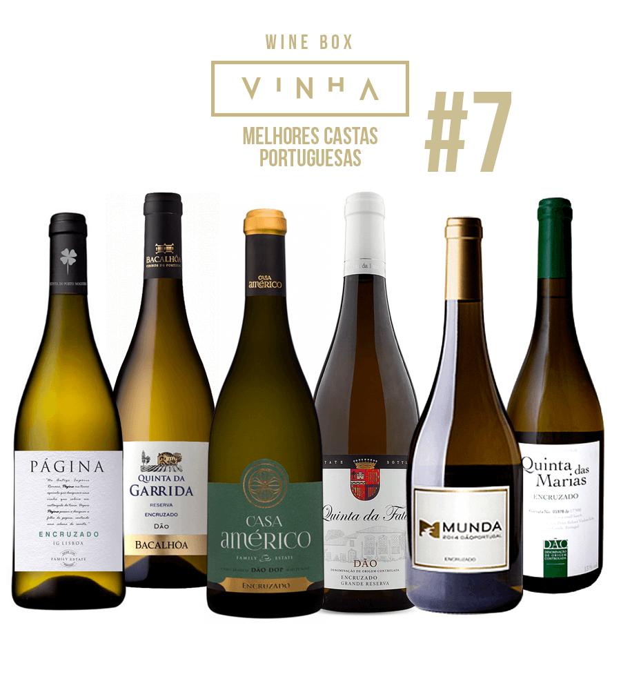 Wine Box Vinho Branco Seleção Rodolfo Tristão #7 Encruzado Portugal