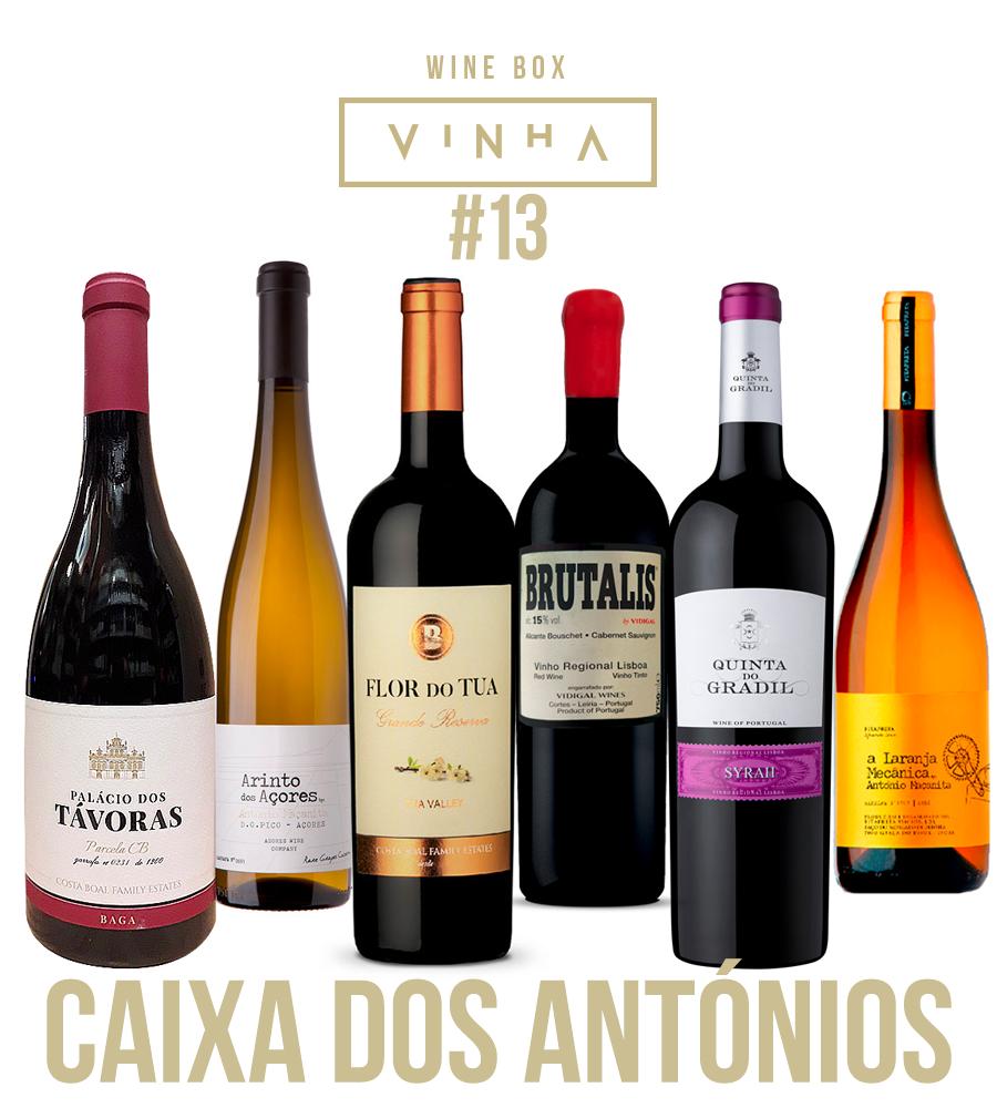 Wine Box Seleção Rodolfo Tristão #13 Caixa dos Antónios Portugal